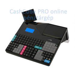 CashCube Pro